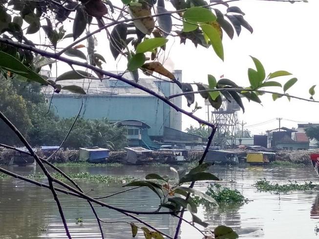 Nhà máy đường - cồn Long Mỹ Phát bị 'tuýt còi'