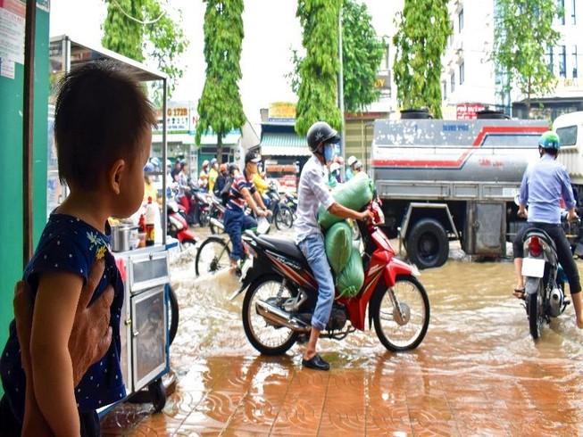 Dân Cần Thơ bì bõm lội nước đưa con đến trường