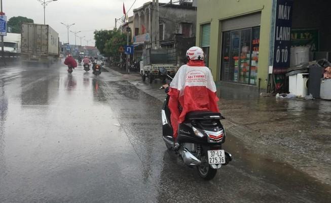 Bắc Nghệ An có 'mưa vàng', rừng Hà Tĩnh vẫn chờ...