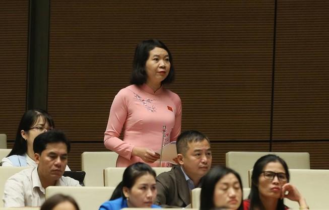 Đại biểu đề nghị làm rõ 'chính sách hình sự đặc biệt'