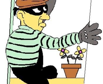 Trộm lừa đảo trộm