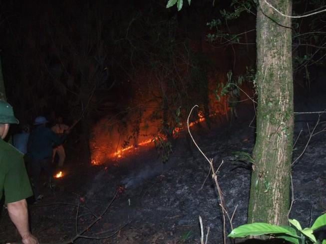 Hạt phó kiểm lâm hy sinh sau khi nỗ lực chữa cháy rừng