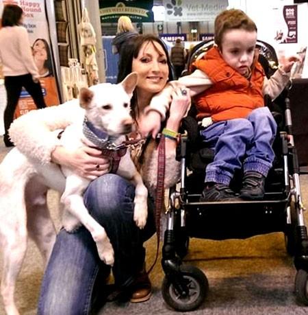 Câu chuyện kỳ diệu về chú chó được giải thoát khỏi quán nhậu ở Việt Nam