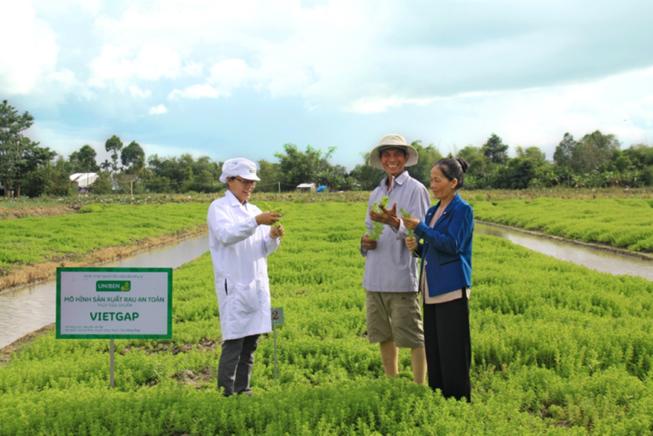 UNIBEN hỗ trợ nông dân thực hiện VietGAP