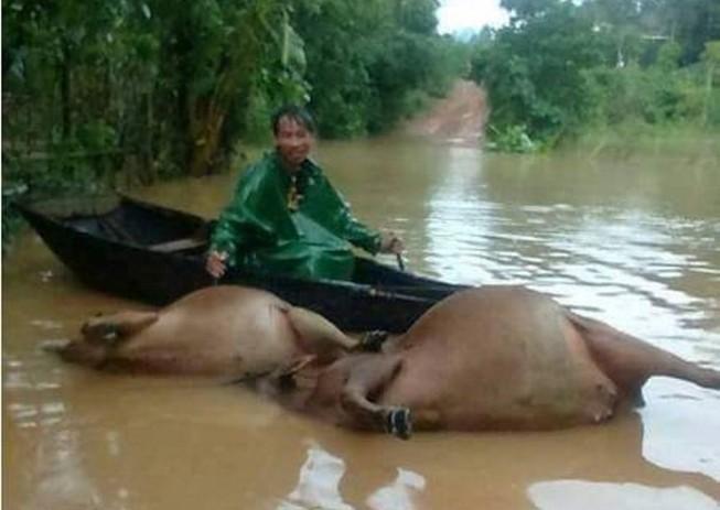 Cục Y tế hướng dẫn phòng, tránh dịch bệnh mùa mưa lũ