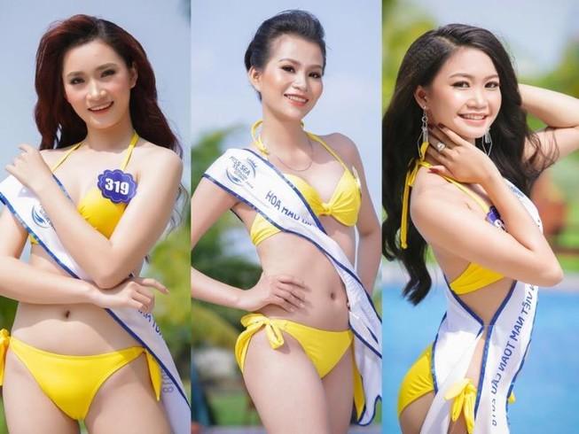 Đề nghị dừng tổ chức Hoa hậu Biển VN toàn cầu 2018