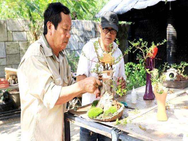 Gặp người sở hữu bộ sưu tập bonsai mini kỷ lục thế giới