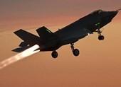 Nhật hạ cánh toàn bộ F-35A sau khi 1 chiếc mất tích trên không