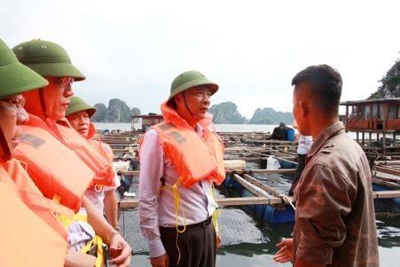 Bão số 2: Quảng Ninh dừng tất cả cuộc họp