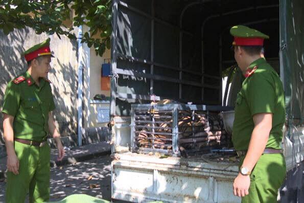 Bắt 3 người chở hổ từ Nghệ An ra Quảng Ninh nấu cao
