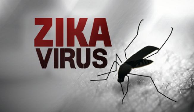 TP.HCM: Thêm 12 trường hợp mắc virus Zika