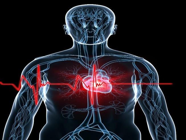 Hẹp van động mạch chủ: Kẻ giết người thầm lặng