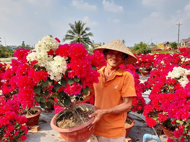 Hoa, nông sản tết: Kẻ cười, người khóc