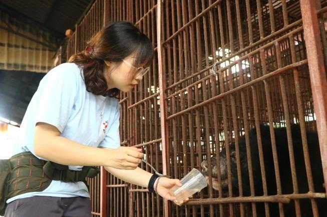 Cứu hộ bảy cá thể gấu bị nuôi nhốt ở Bình Dương, Đồng Nai