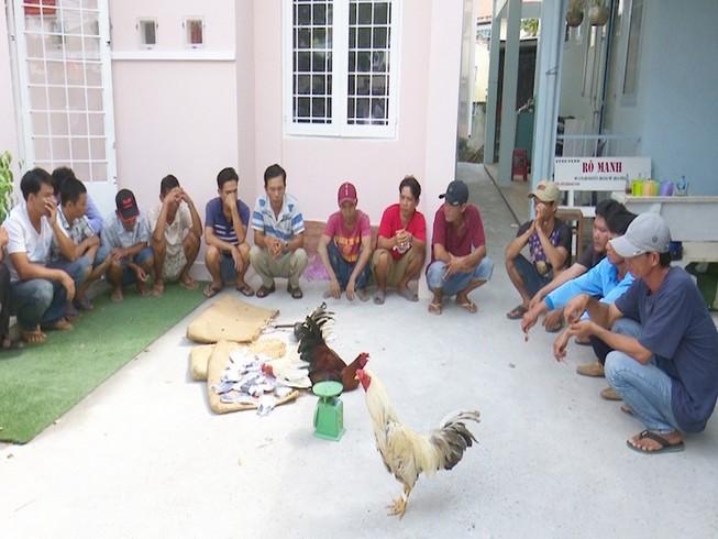 Bắt quả tang 21 đối tượng đá gà ăn tiền ngày giáp tết