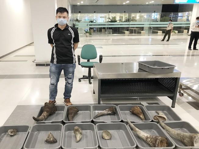 Mang 11 sừng tê giác từ Hàn Quốc về Việt Nam
