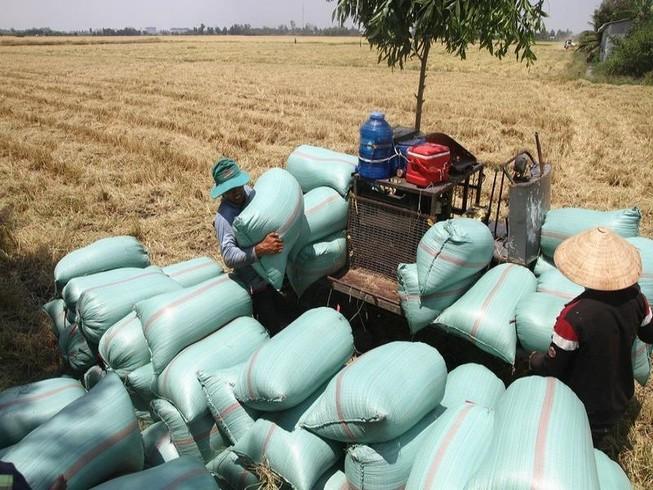 An Giang kiến nghị Thủ tướng cho tiếp tục xuất khẩu gạo