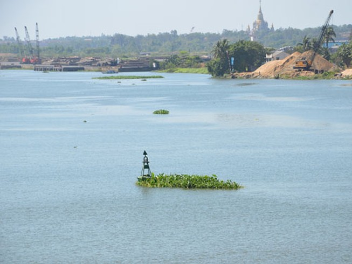 Cấp bách giải cứu sông Đồng Nai