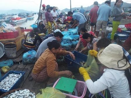 Khám phá nhịp sống làng chài giữa Vịnh Cam Ranh