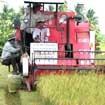 Hỗ trợ nông dân vay vốn: Phải cụ thể!
