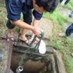 KCN Lê Minh Xuân: Nước thải hôi tận óc