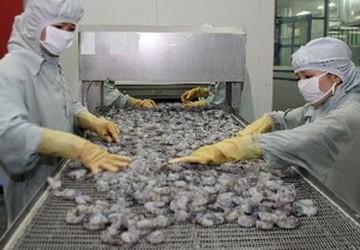 VASEP kiến nghị xuất khẩu tôm phải có điều kiện