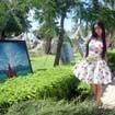 Hoa hậu Mai Phương Thúy vẽ tranh