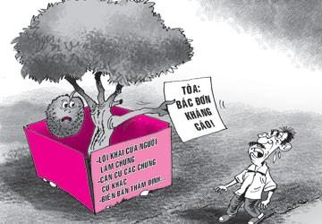 Chặt cây mít hàng xóm