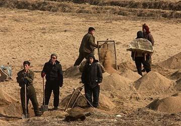 Những bức ảnh hiếm về nông thôn CHDCND Triều Tiên