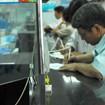 Thống đốc Ngân hàng nhà nước Nguyễn Văn Giàu: Sau bù lãi suất sẽ có phương án khác hỗ trợ doanh nghiệp
