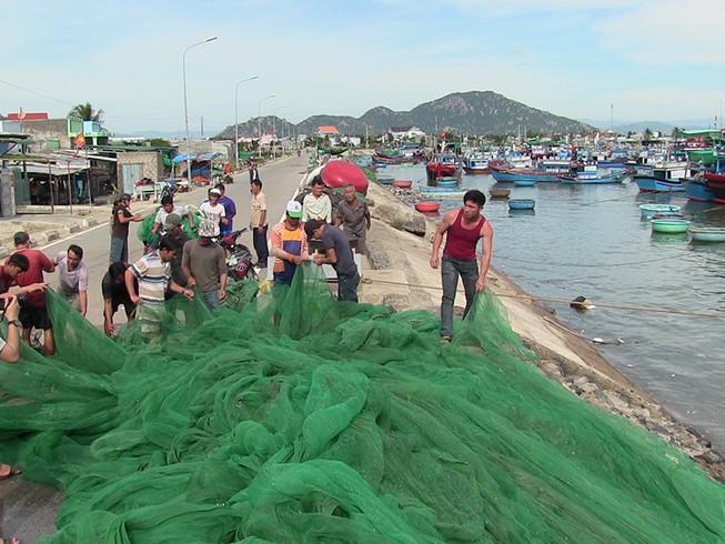 Dân Ninh Thuận chằng chống tài sản chống bão số 12
