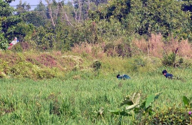 Cảnh sát dò tìm tang vật quanh khu vực tiêu diệt Tuấn 'khỉ'