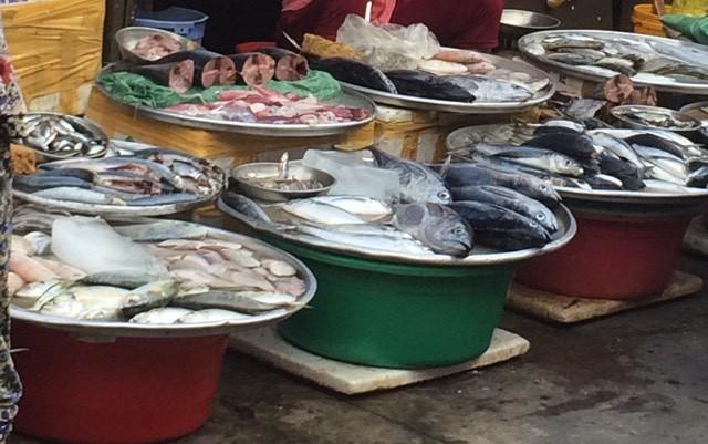Vớt cá chết để bán, dễ mang họa