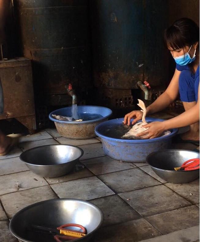 Buôn bán thịt gia cầm bị nhiễm cúm sẽ bị phạt thế nào?