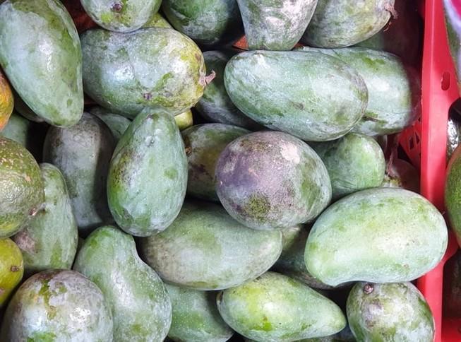 Ăn xoài xanh giúp tăng cường sức khỏe tim mạch
