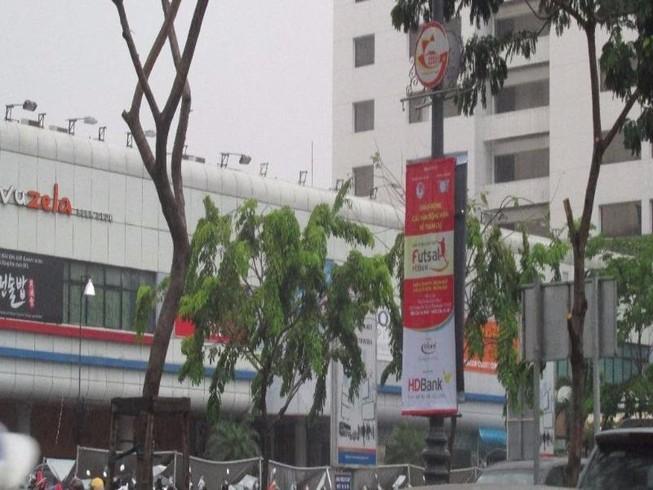 Nhóm người bí ẩn cắt trụi hàng cây ở đường Trường Sơn