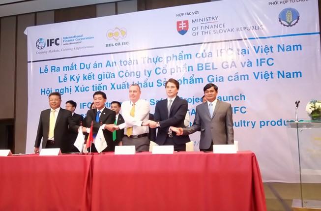 Gà Việt 'săn' chứng nhận GlobalG.A.P để xuất khẩu