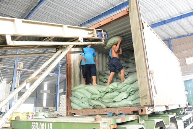 'Ông lớn' gạo vẫn được ưu ái hợp đồng cấp chính phủ