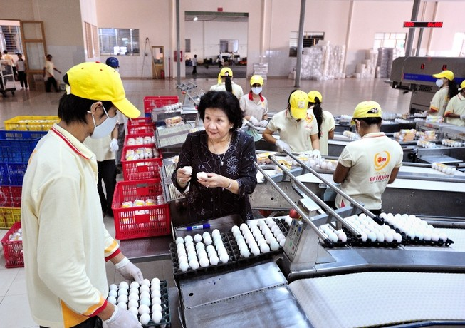 Hơn 32 triệu USD đầu tư vào quả trứng gà Việt Nam