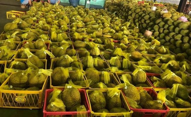 Sầu riêng Việt Nam 'bơi' sang Mỹ, giá 185.000 đồng/kg