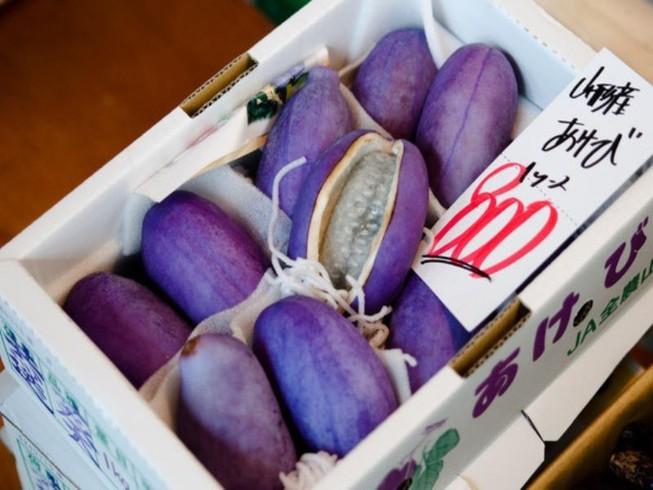 Nho Nhật siêu đắt 300.000 đồng/quả bán tại VN có gì đặc biệt