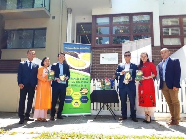 Sầu riêng Việt đối đầu với sầu riêng Thái tại Úc