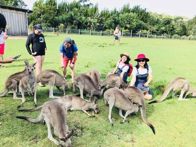 Nhiều tour hè dành ưu đãi đặc biệt cho trẻ em