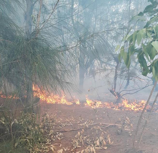 Đang cháy rừng cạnh khu dân cư ở Phú Yên