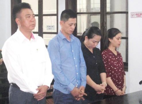 12 luật sư bào chữa cho tổng giám đốc chứa mại dâm
