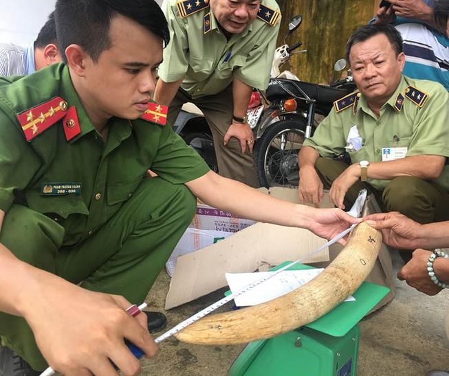 Hơn 17 kg nghi ngà voi vận chuyển trái phép