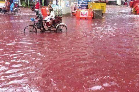 Xuất hiện dòng sông máu tại thủ đô Bangladesh - ảnh 1