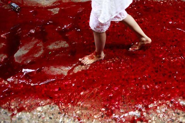 Xuất hiện dòng sông máu tại thủ đô Bangladesh - ảnh 3