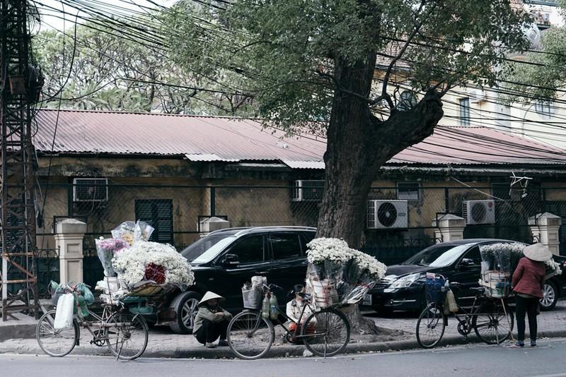 Họa mi cuối mùa ngập tràn phố Hà Nội - ảnh 8