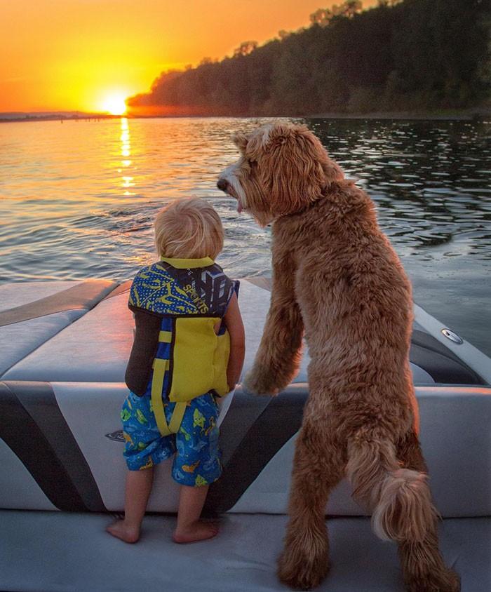 Tan chảy với cặp đôi bé-cún cực đáng yêu - ảnh 2